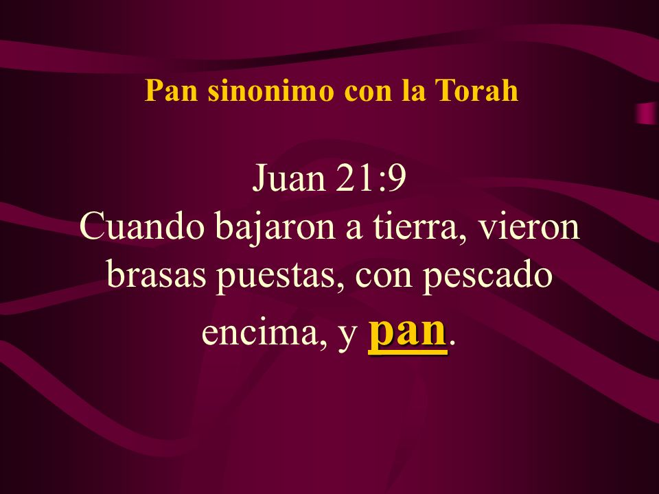 Pan sinonimo con la Torah