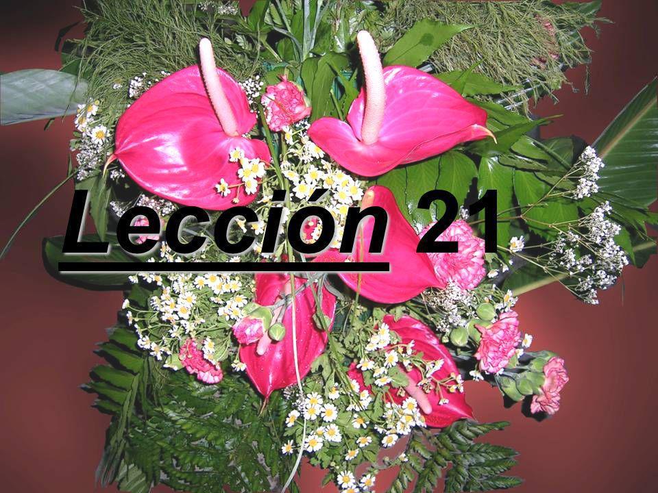 Lección 21