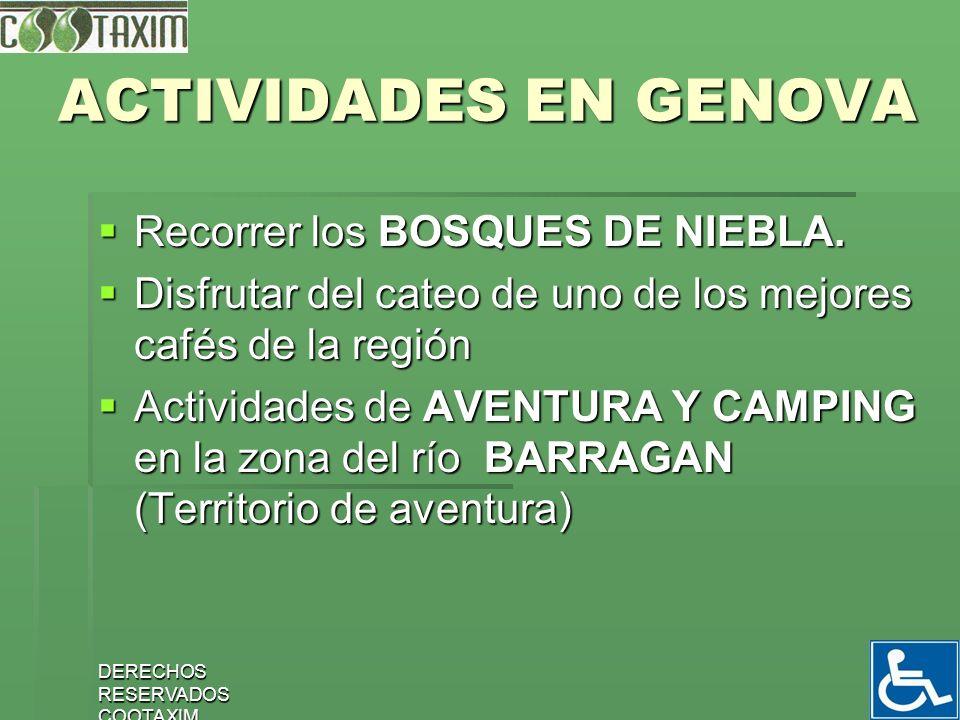 ACTIVIDADES EN GENOVA Recorrer los BOSQUES DE NIEBLA.