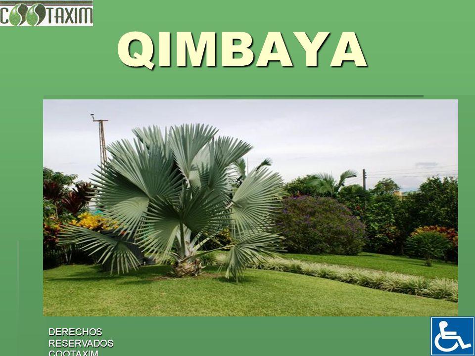 QIMBAYA DERECHOS RESERVADOS COOTAXIM
