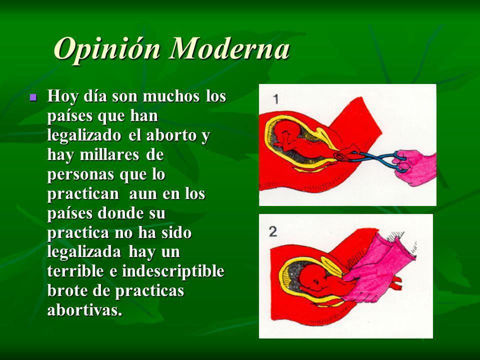 Opinión Moderna