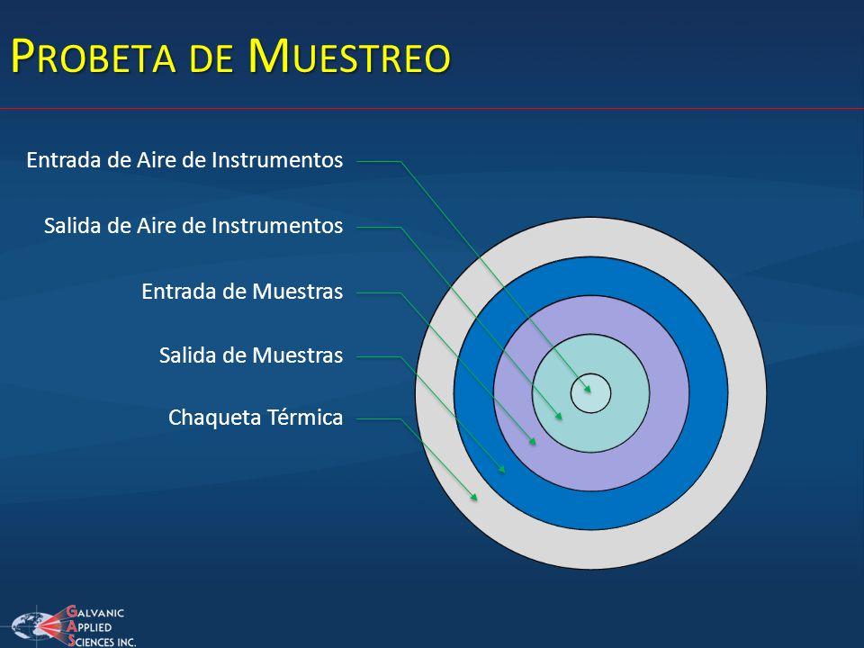 Probeta de Muestreo Entrada de Aire de Instrumentos