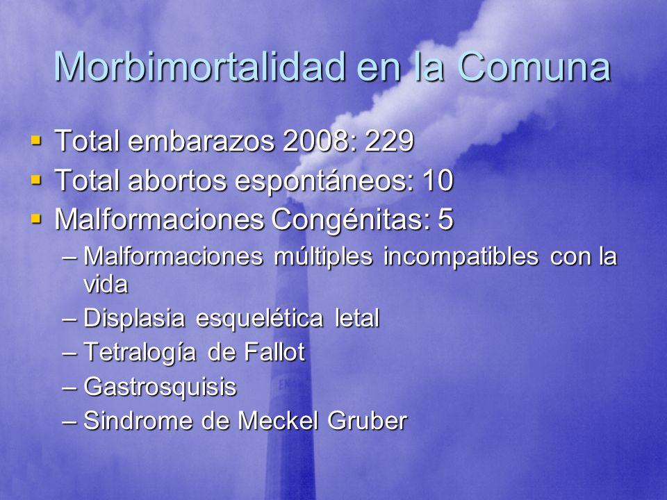 Morbimortalidad en la Comuna