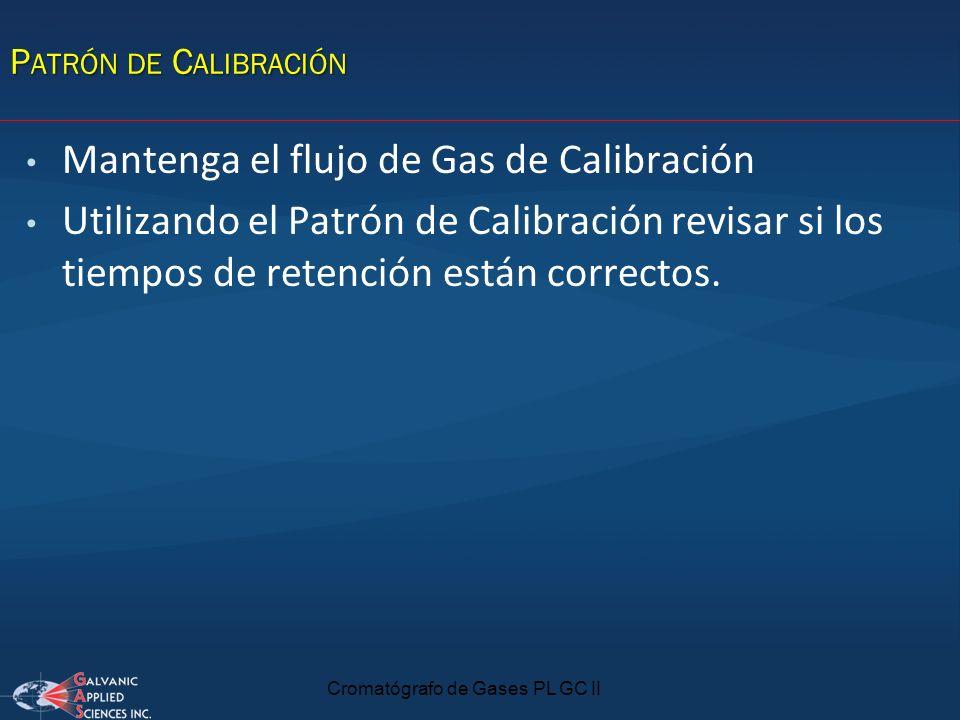 Cromatógrafo de Gases PL GC II