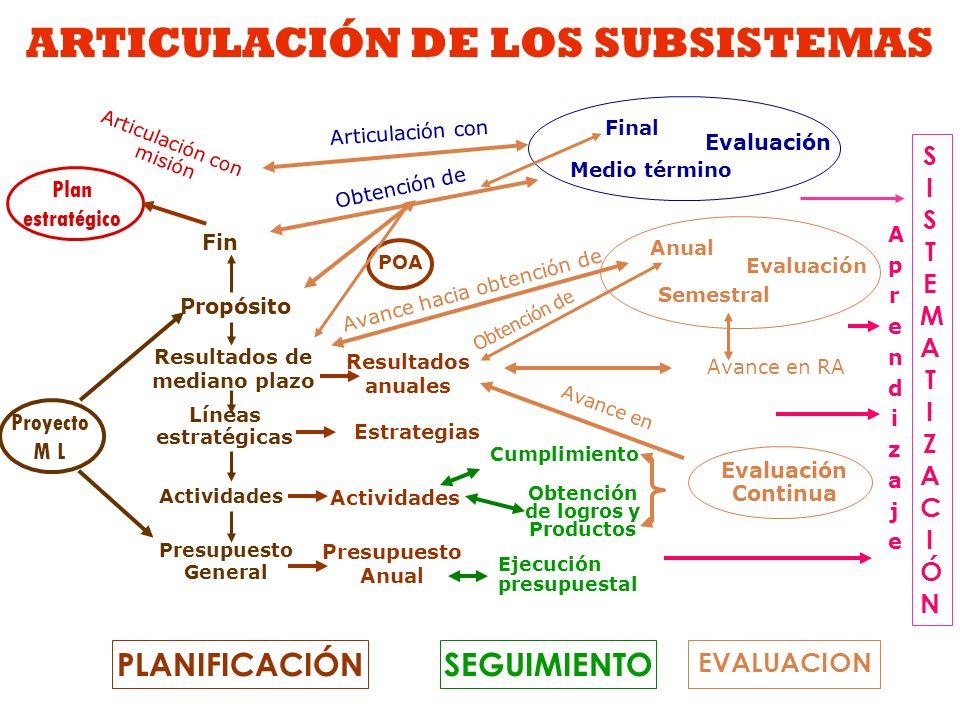 ARTICULACIÓN DE LOS SUBSISTEMAS
