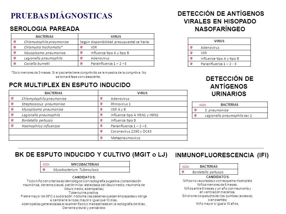 PRUEBAS DIÁGNOSTICAS DETECCIÓN DE ANTÍGENOS VIRALES EN HISOPADO NASOFARÍNGEO. SEROLOGIA PAREADA. BACTERIAS.