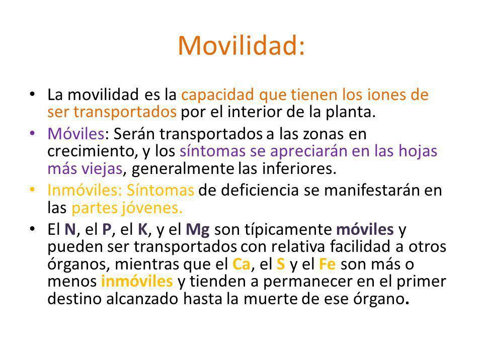 Movilidad: La movilidad es la capacidad que tienen los iones de ser transportados por el interior de la planta.
