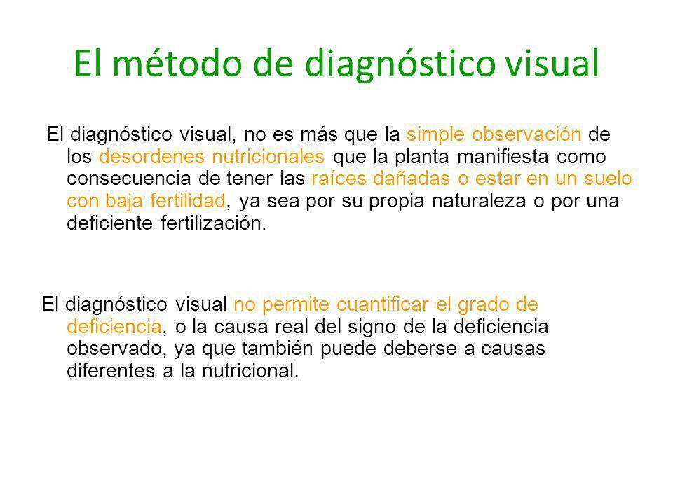 El método de diagnóstico visual