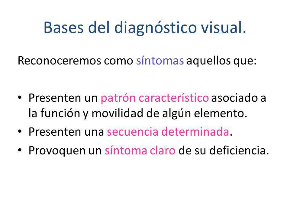 Bases del diagnóstico visual.