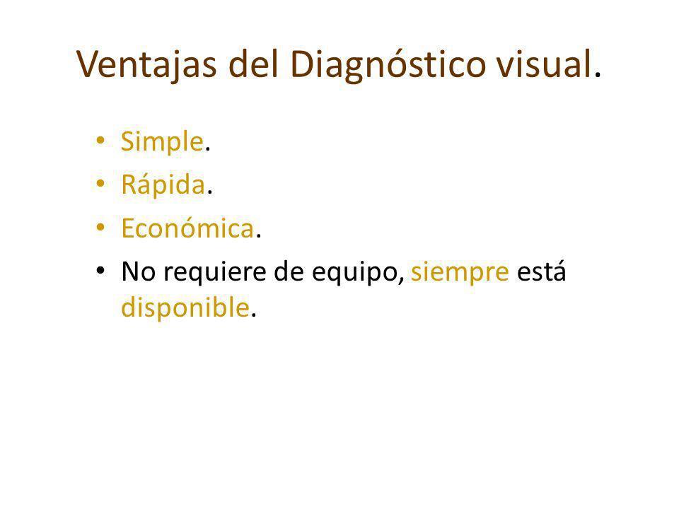 Ventajas del Diagnóstico visual.