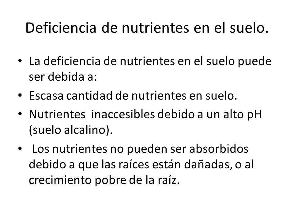 Deficiencia de nutrientes en el suelo.
