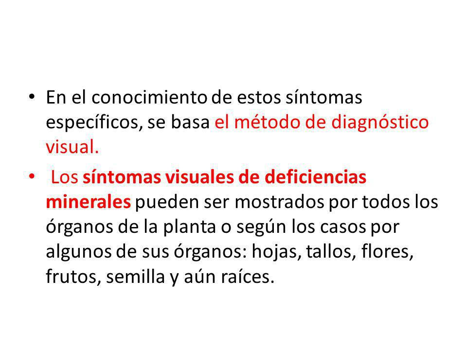 En el conocimiento de estos síntomas específicos, se basa el método de diagnóstico visual.