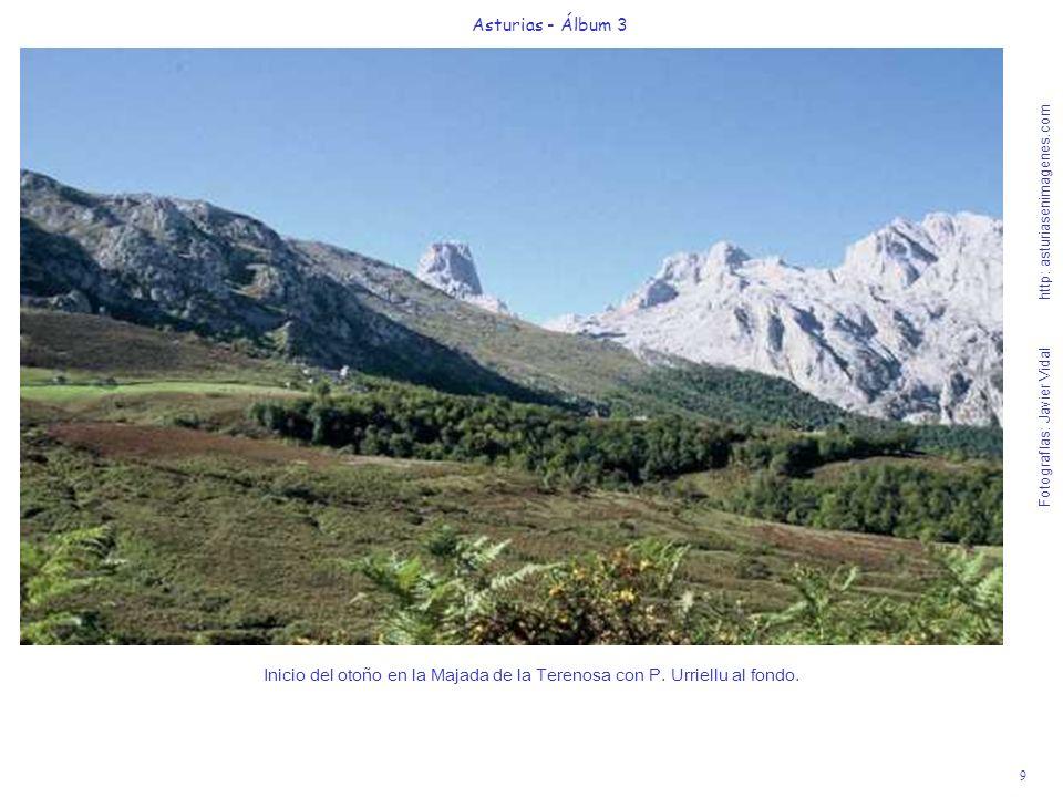 Inicio del otoño en la Majada de la Terenosa con P. Urriellu al fondo.