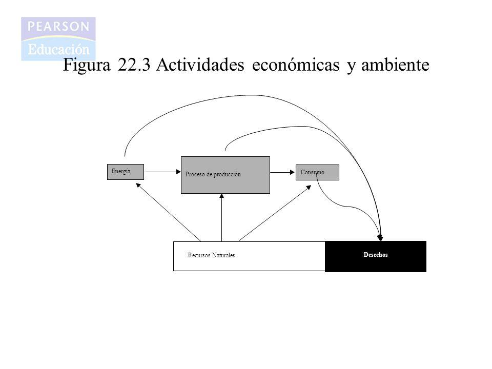 Figura 22.3 Actividades económicas y ambiente