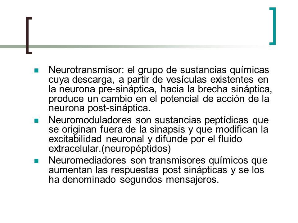 Neurotransmisor: el grupo de sustancias químicas cuya descarga, a partir de vesículas existentes en la neurona pre-sináptica, hacia la brecha sináptica, produce un cambio en el potencial de acción de la neurona post-sináptica.