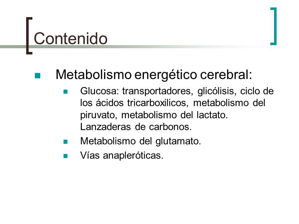 Contenido Metabolismo energético cerebral: