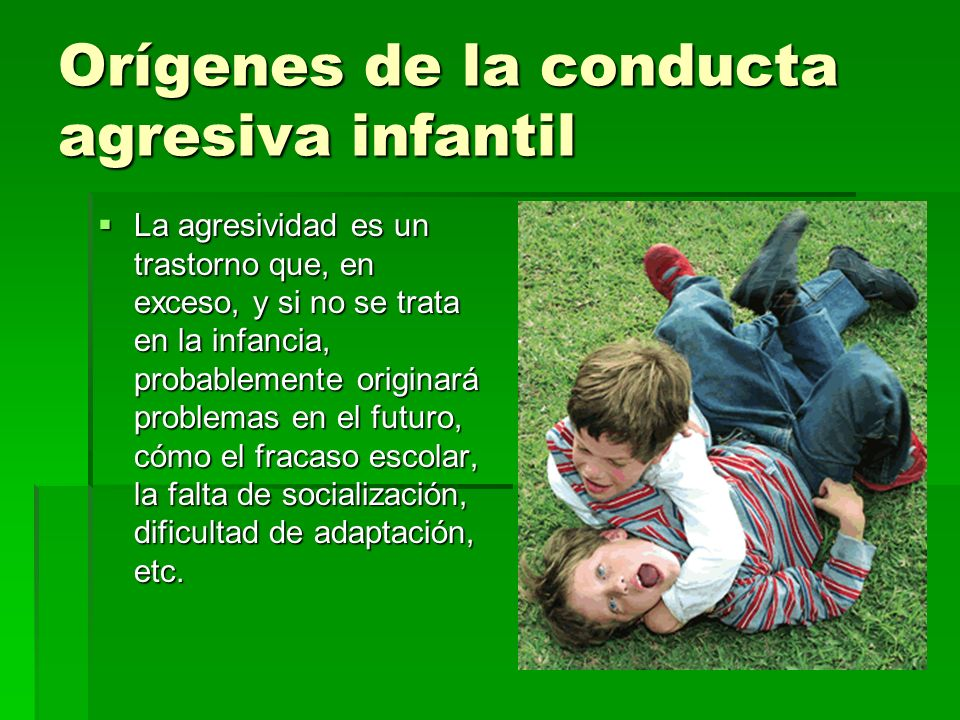 Orígenes de la conducta agresiva infantil