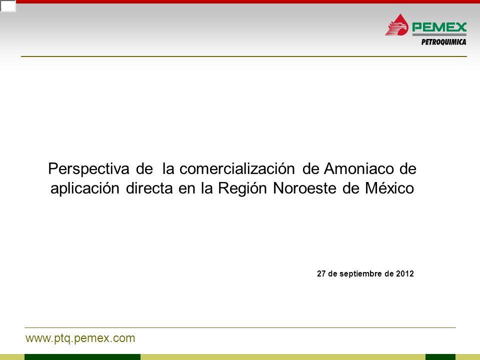 Perspectiva de la comercialización de Amoniaco de aplicación directa en la Región Noroeste de México