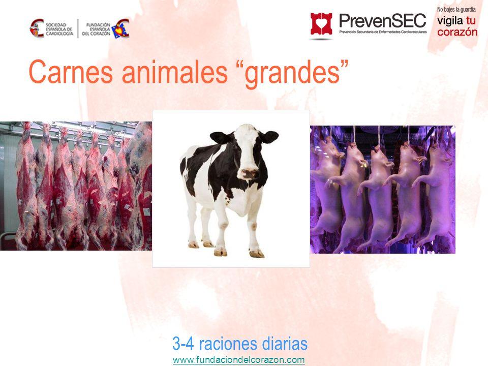 Carnes animales grandes