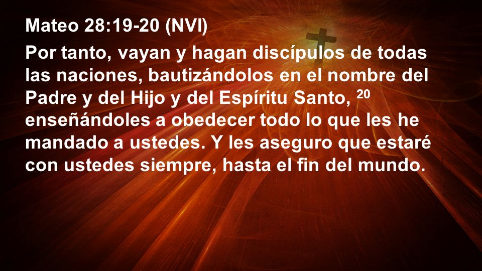 Mateo 28:19-20 (NVI)