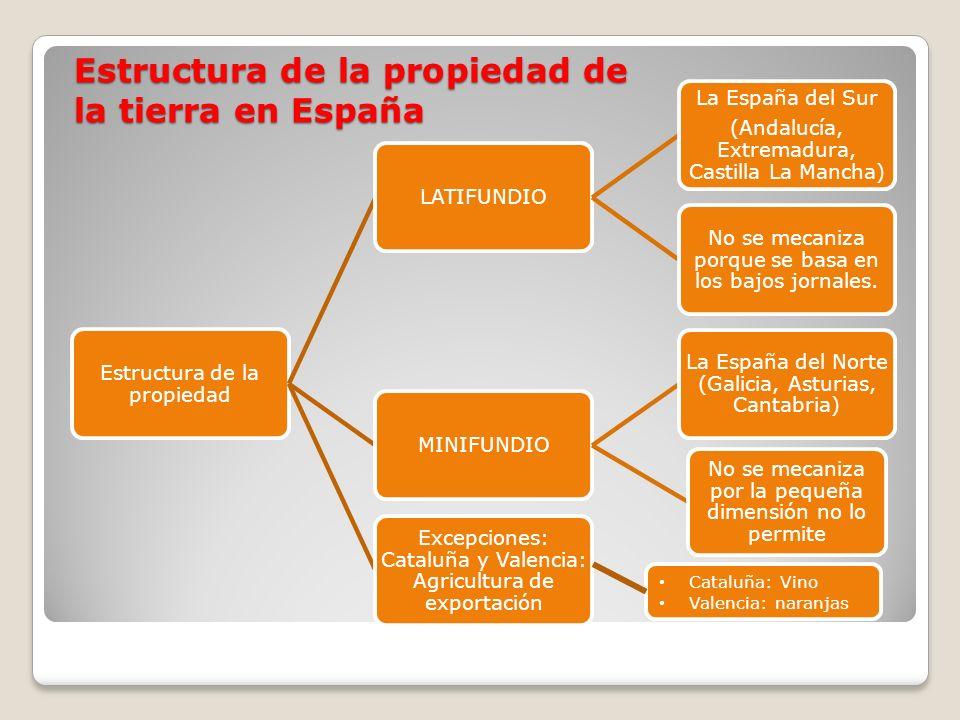 Estructura de la propiedad de la tierra en España