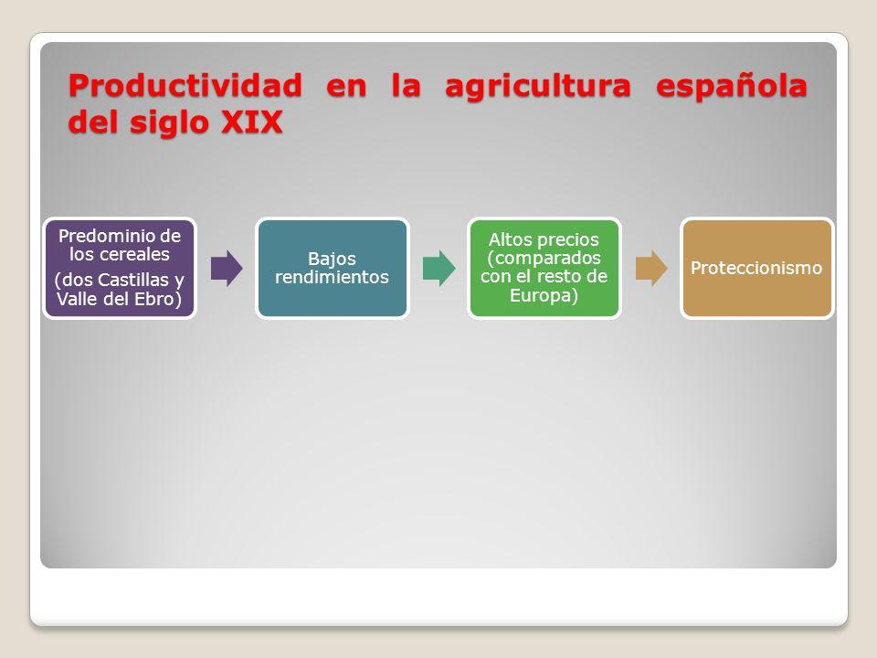 Productividad en la agricultura española del siglo XIX