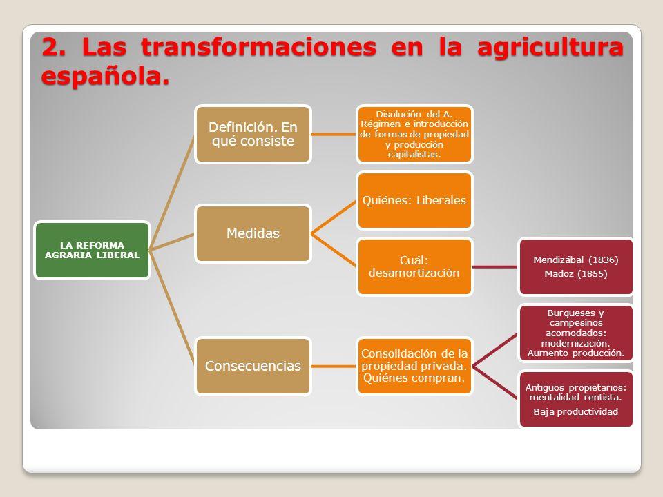 2. Las transformaciones en la agricultura española.