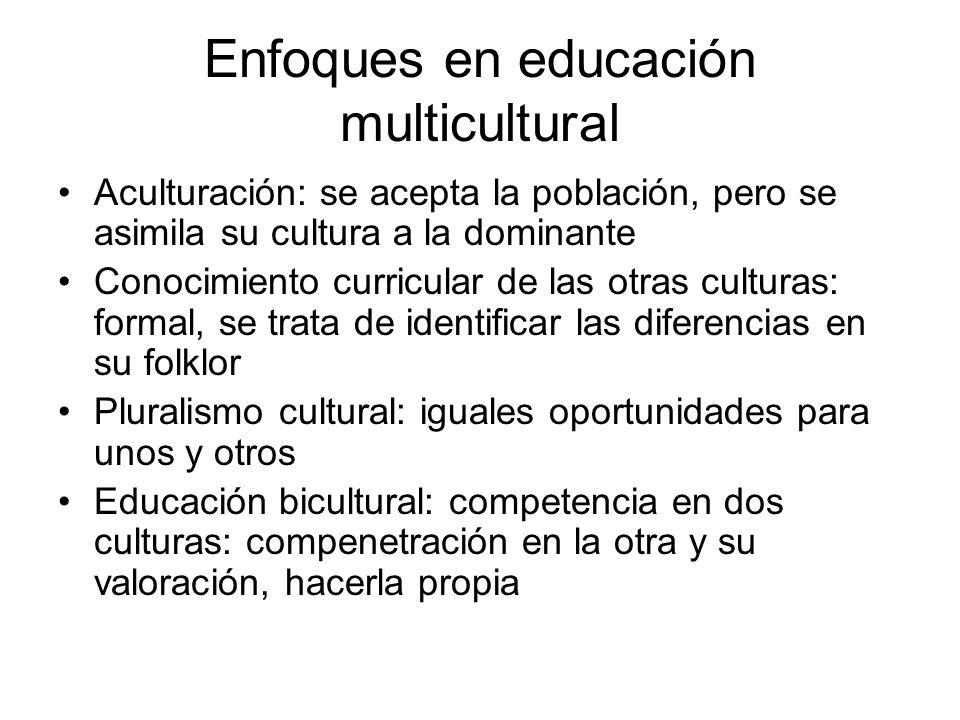 Enfoques en educación multicultural