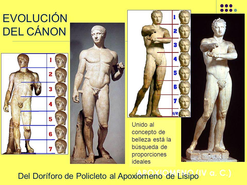 EVOLUCIÓN DEL CÁNON LISIPO: APOXIOMENO (IV a. C.)