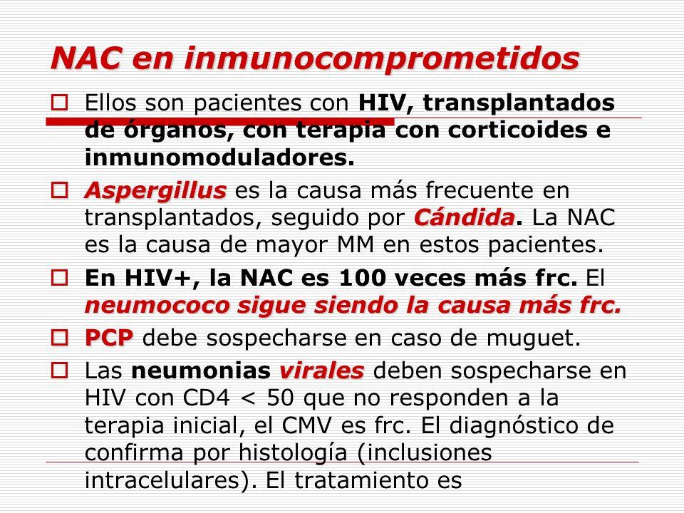 NAC en inmunocomprometidos