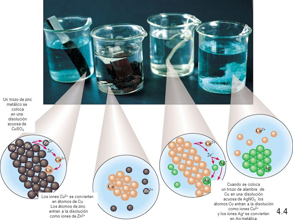 4.4 Un trozo de zinc metálico se coloca en una disolución acuosa de
