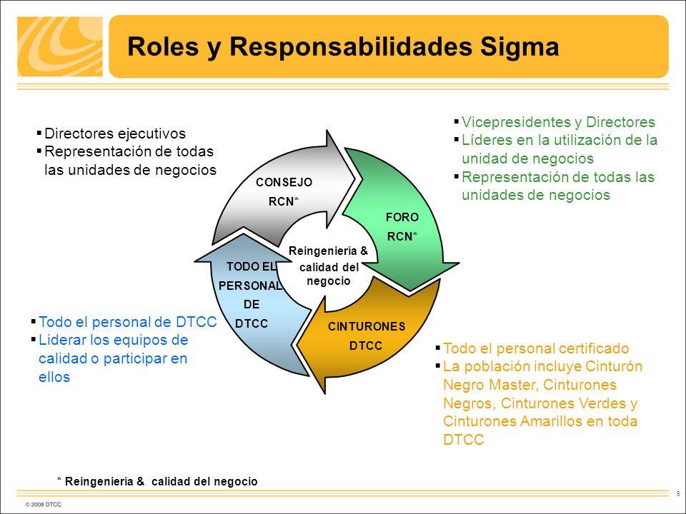 Roles y Responsabilidades Sigma