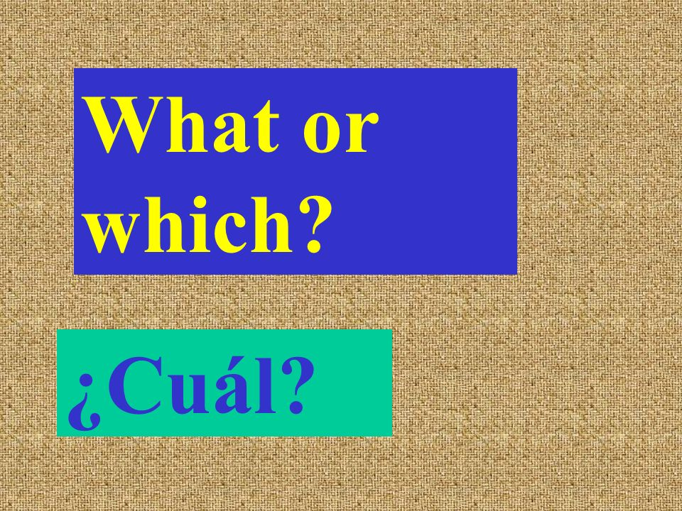 What or which ¿Cuál