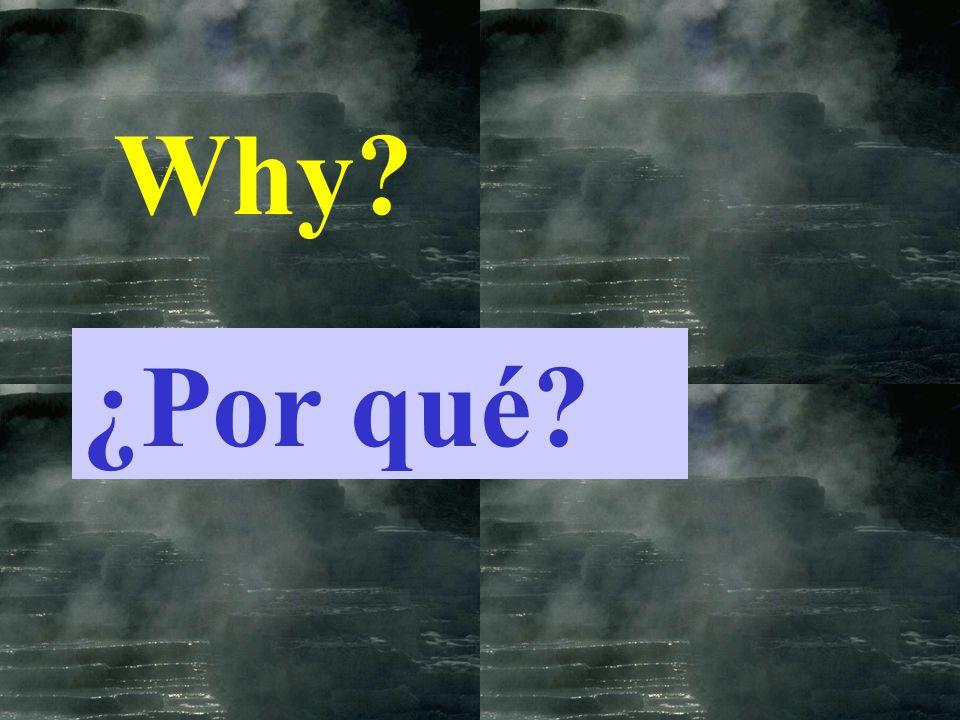 Why ¿Por qué