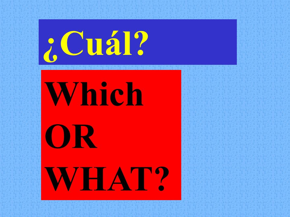 ¿Cuál Which OR WHAT