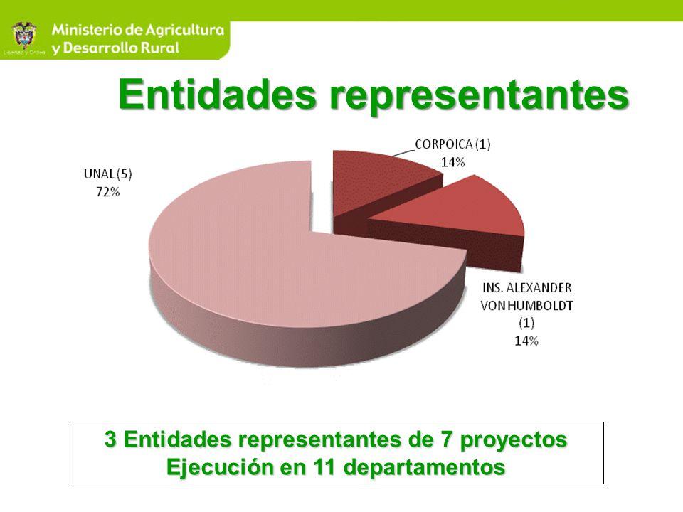 Entidades representantes