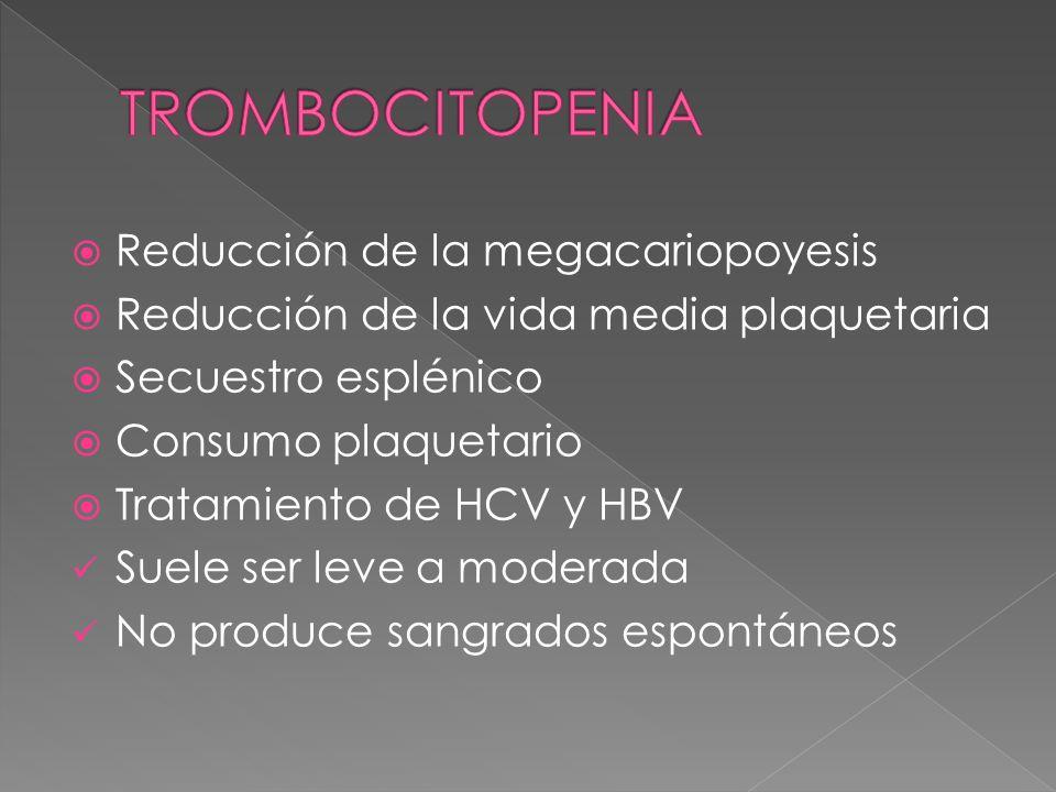 TROMBOCITOPENIA Reducción de la megacariopoyesis
