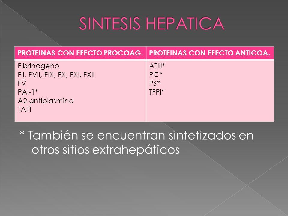 SINTESIS HEPATICA PROTEINAS CON EFECTO PROCOAG. PROTEINAS CON EFECTO ANTICOA. Fibrinógeno. FII, FVII, FIX, FX, FXI, FXII.