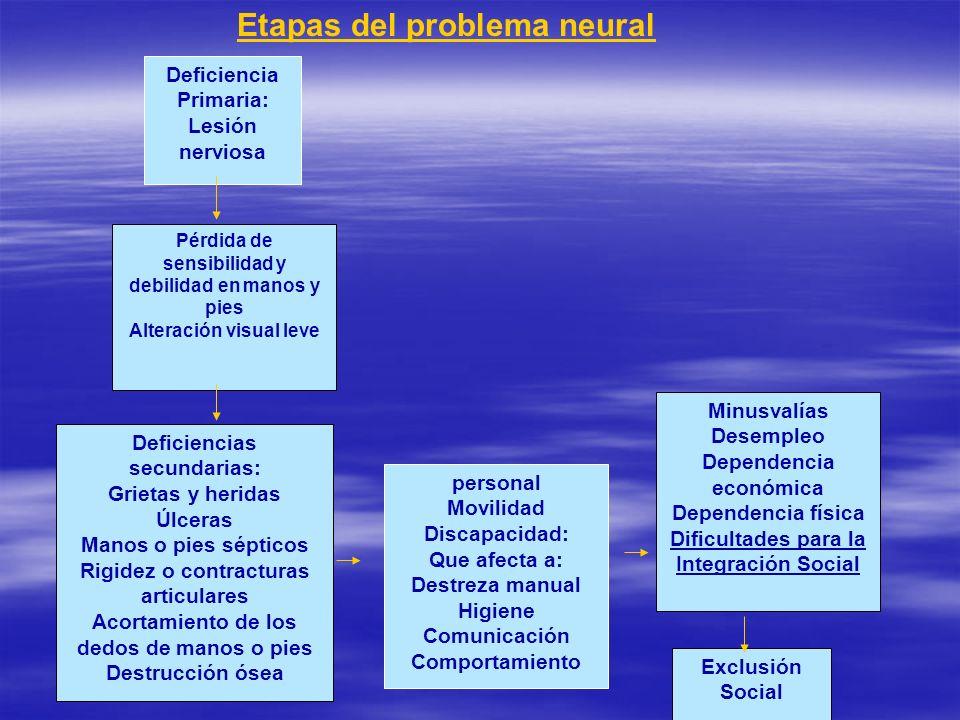Etapas del problema neural