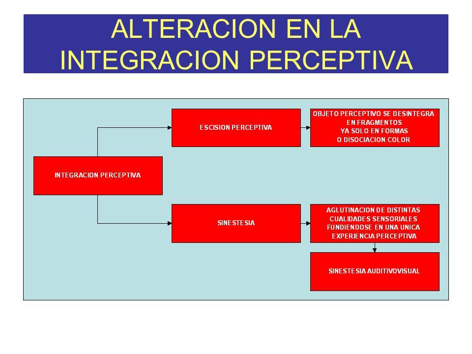 ALTERACION EN LA INTEGRACION PERCEPTIVA