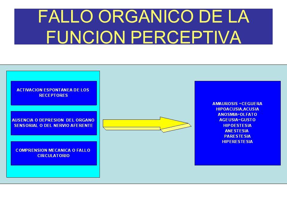 FALLO ORGANICO DE LA FUNCION PERCEPTIVA