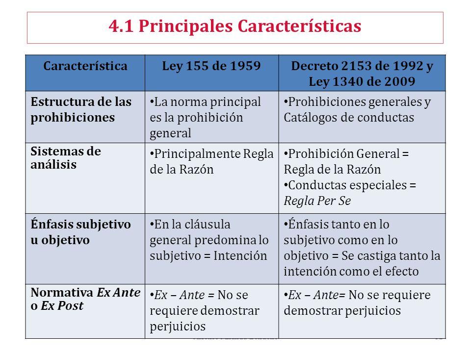 4.1 Principales Características