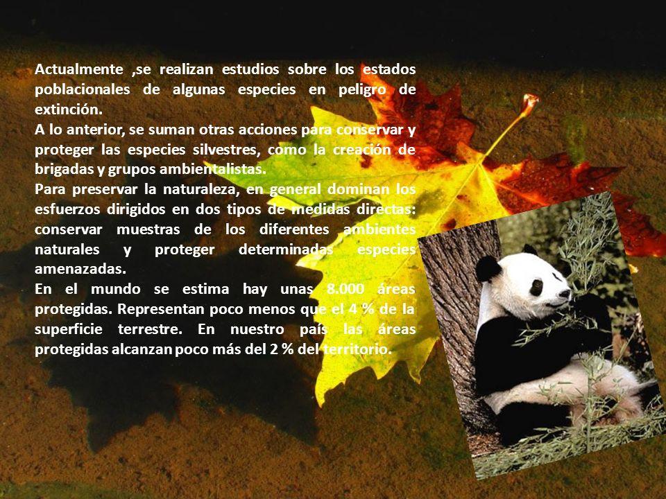 Actualmente ,se realizan estudios sobre los estados poblacionales de algunas especies en peligro de extinción.