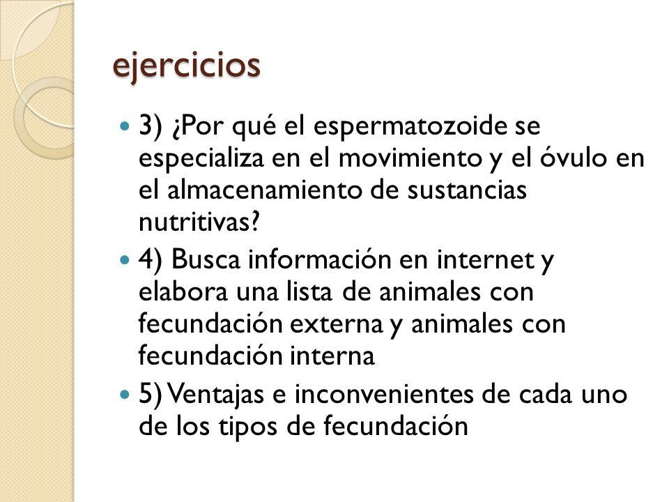 ejercicios 3) ¿Por qué el espermatozoide se especializa en el movimiento y el óvulo en el almacenamiento de sustancias nutritivas