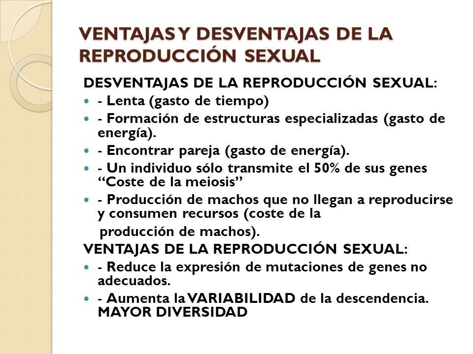 VENTAJAS Y DESVENTAJAS DE LA REPRODUCCIÓN SEXUAL