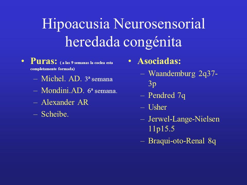 Hipoacusia Neurosensorial heredada congénita