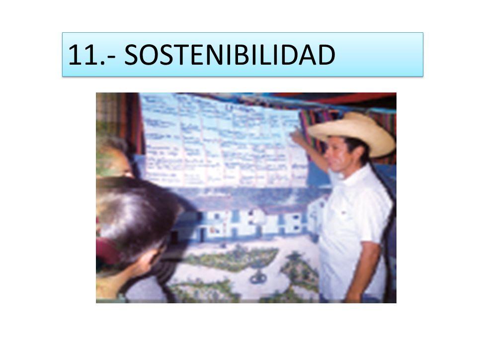 11.- SOSTENIBILIDAD