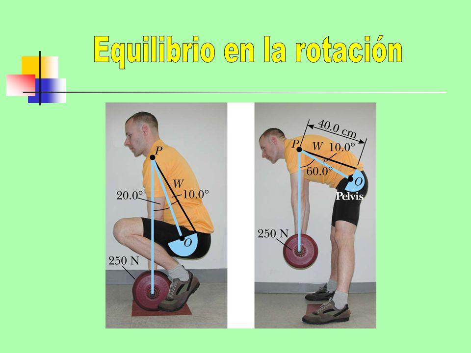 Equilibrio en la rotación