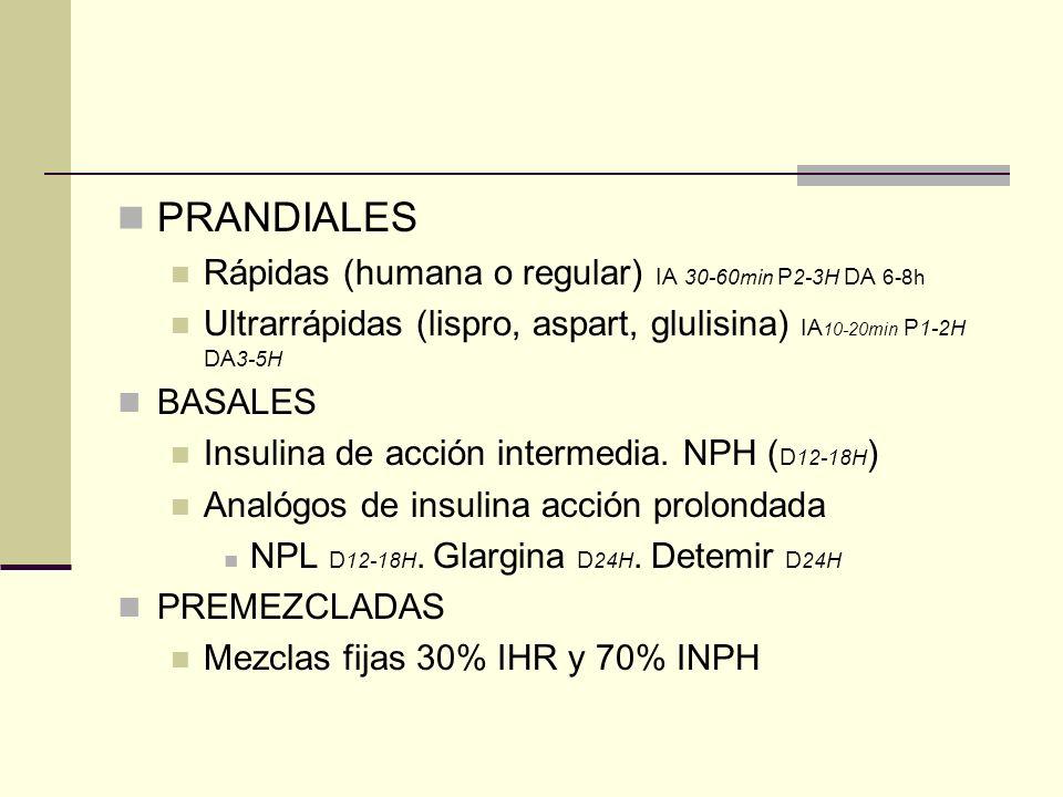 PRANDIALES Rápidas (humana o regular) IA 30-60min P2-3H DA 6-8h