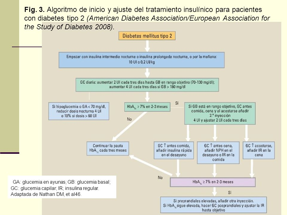 Fig. 3. Algoritmo de inicio y ajuste del tratamiento insulínico para pacientes con diabetes tipo 2 (American Diabetes Association/European Association for the Study of Diabetes 2008).